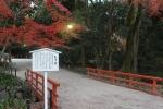 あけ橋と紅葉