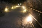 灯籠が並ぶ道1