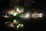 鏡写しのライトアップ1