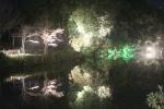 鏡写しのライトアップ4