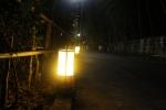灯籠が並ぶ道2