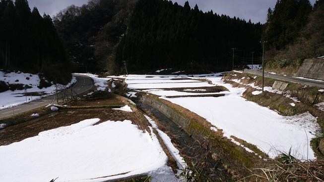 0224-8.jpg