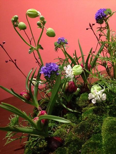 garden arrenge