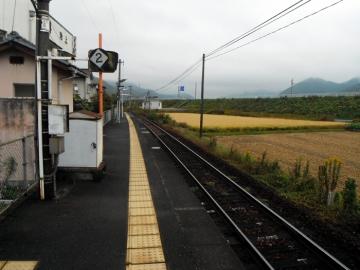2015-11-8kokoro2.jpg