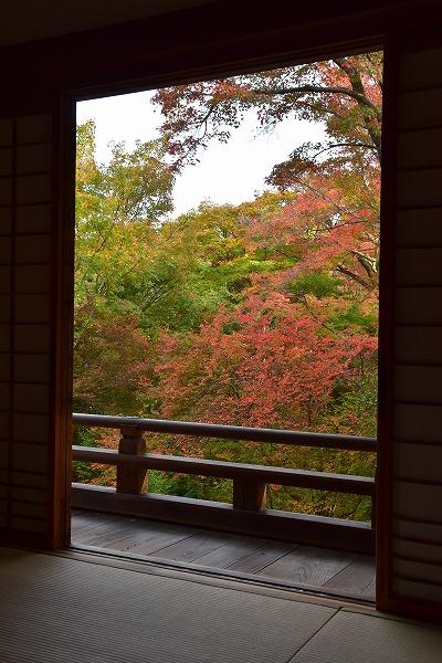 嵯峨野の紅葉1