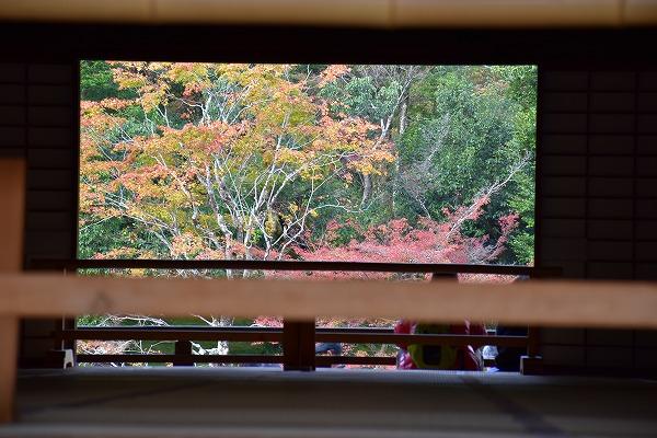 京都の紅葉5