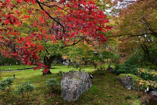 京都の紅葉9