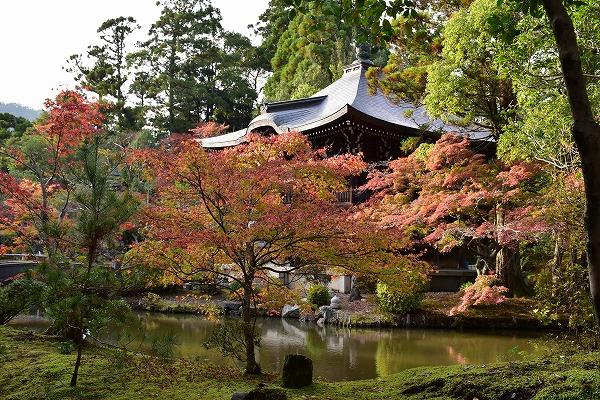 京都の紅葉2015 155