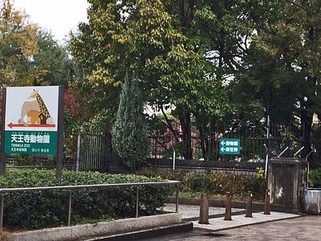 天王寺動物園 1