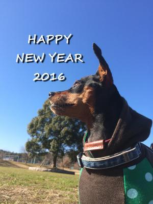 new+year_convert_20160108162321.jpg