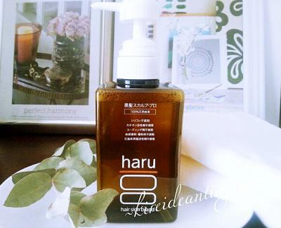 haru-001.png