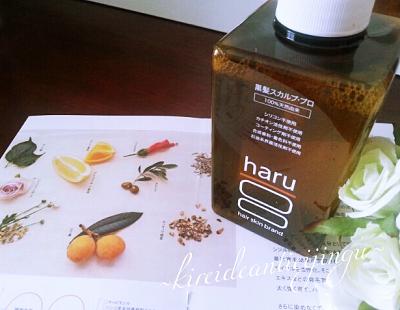 haru-004.png