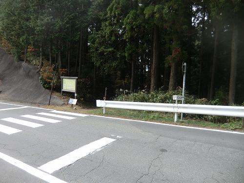 20151106 町石道 23