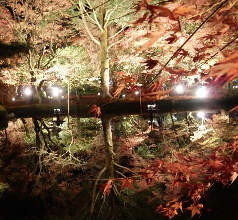 そぎ公園 2