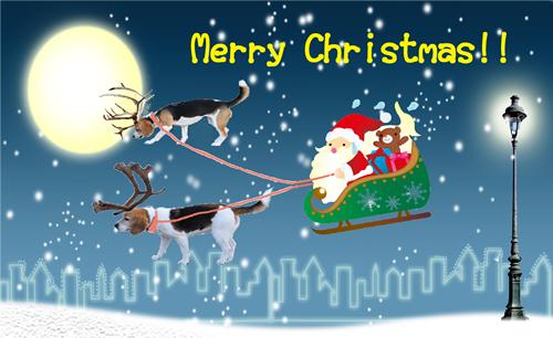 ブログ用クリスマス加工