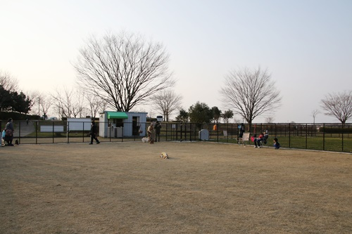 PW1A4648.jpg