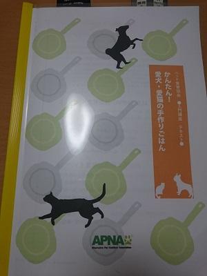 2016.19APNA入門編