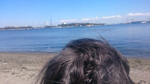 海の公園5