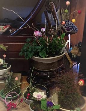 お正月用ミニ盆栽