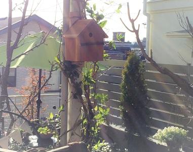 巣箱 (2)