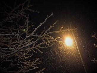雪の夜 (2)