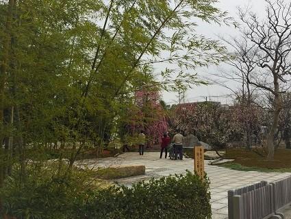 西風梅園苑(2)