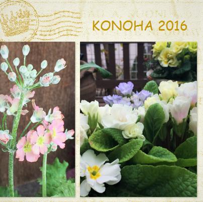 KONOHA2016.png