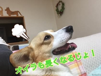 th_IMG_1274.jpg