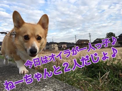 th_IMG_2721.jpg