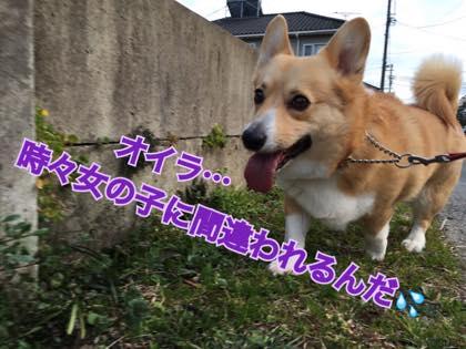 th_IMG_2722.jpg