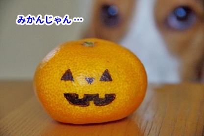 ハロウィン 4