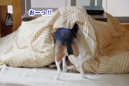 寝つき 6