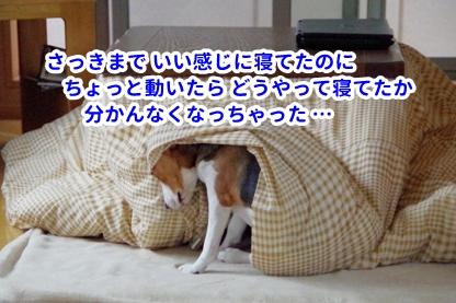 寝つき 3