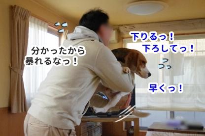 抱っこ 5