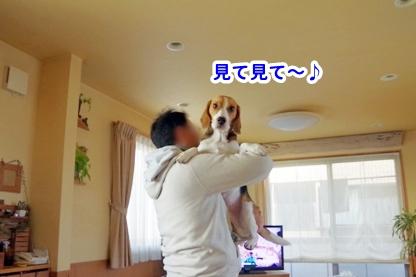 抱っこ 1