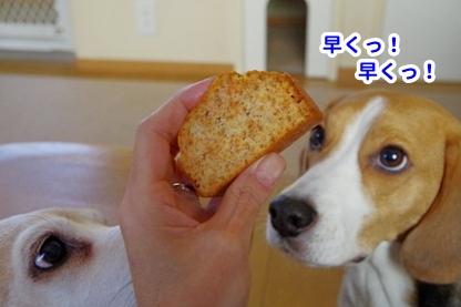 お菓子 9