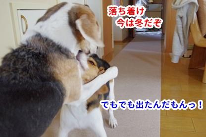 まっぱ 5