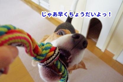 ロープ 2