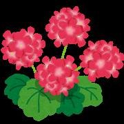 herb_geranium_201601271723312cc.png