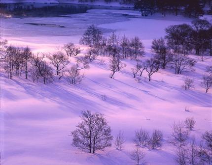 小野川冬景色第一