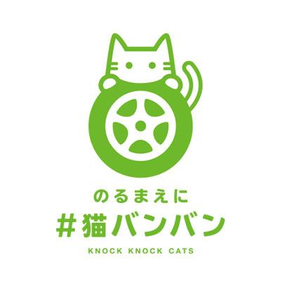 KnockKnockCats_logo2.jpg