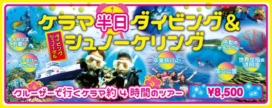 大人気★ケラマ半日・体験ダイビングツアー