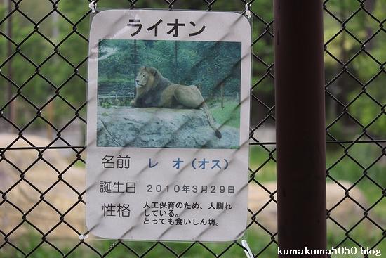 とくしま動物園_36