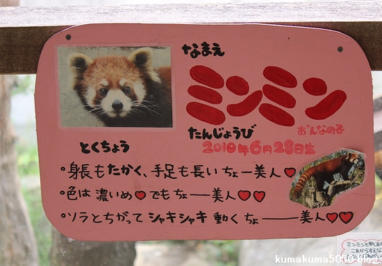 とくしま動物園_39