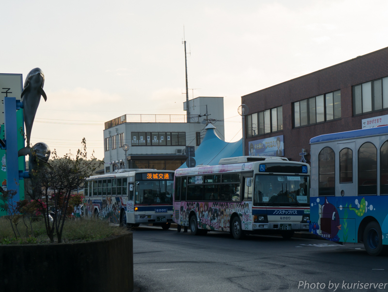 DSC05007.jpg