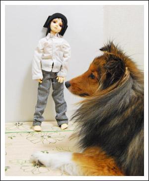 毎日ハル日和。-はると人形。