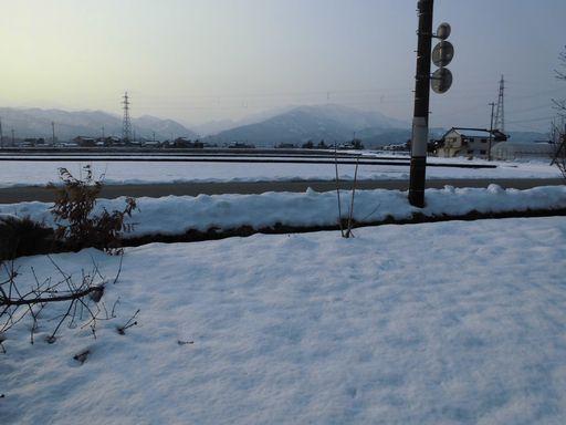 ayuki0227-1.jpg
