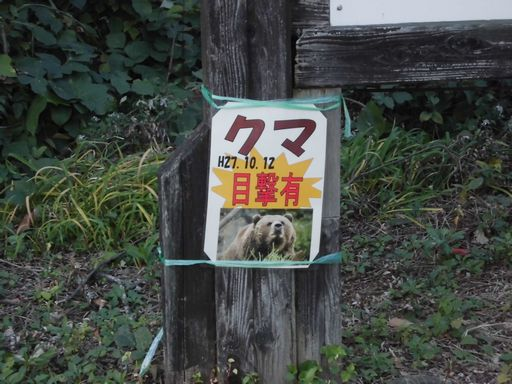 ayukiyama1025-7.jpg