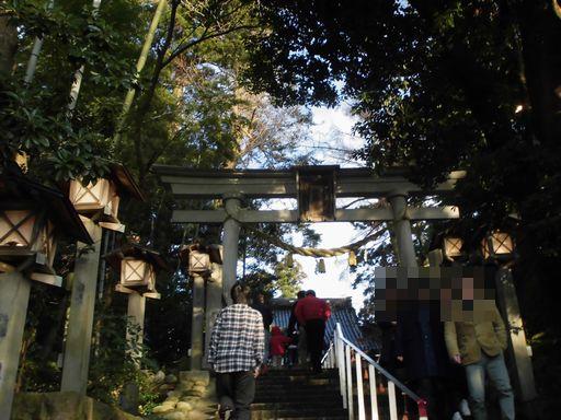 hatumoude0101-1_20160101175728f34.jpg