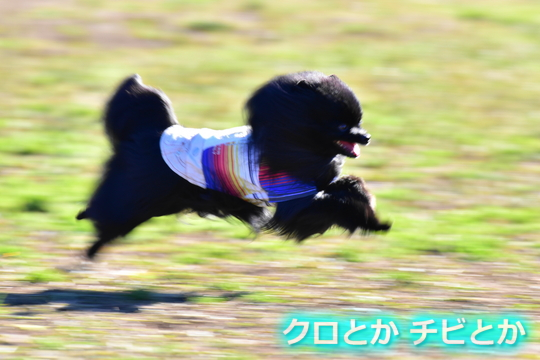540px20151230_FUGA-04.jpg